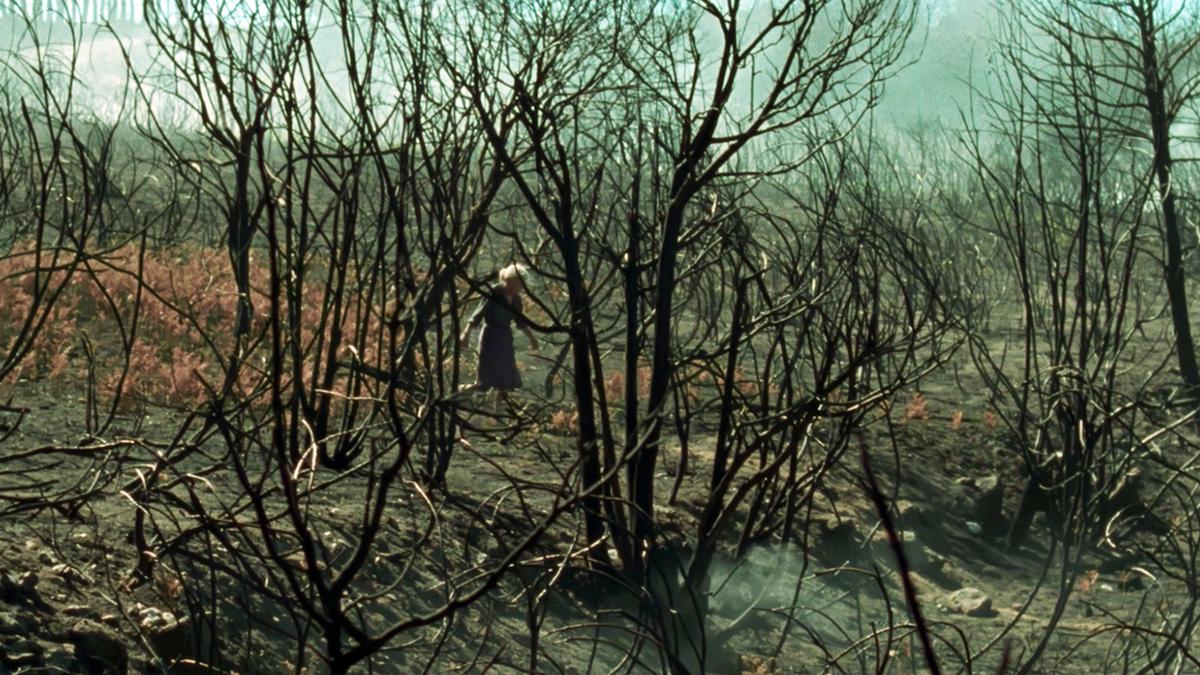 Klub Filmowy Janosika: Siła ognia